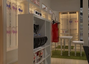 Fashion lingerie shop display with interior design